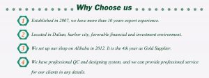 Why Choose Us - Ronsun