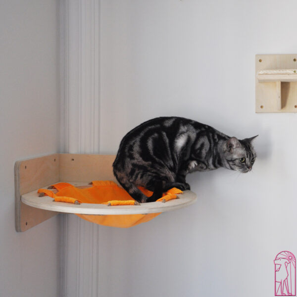 Cat Shelves Corner