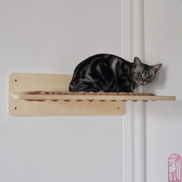 Modern Cat Shelves